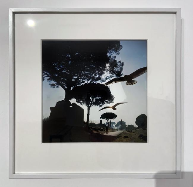 Jacques Henri Lartigue (1894-1986) 'The Appian Way, Rome, Italy, January 1960'(installation view)