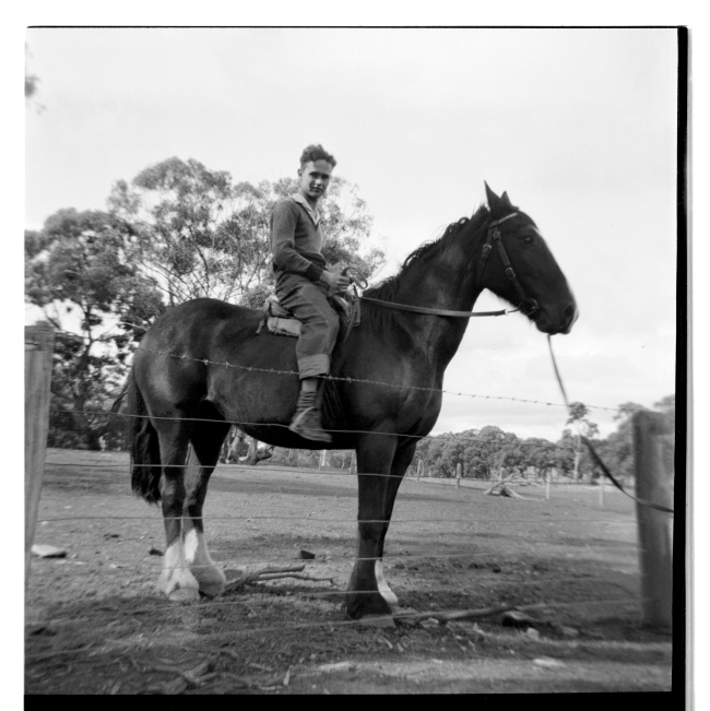 Unknown photographer (Australian) 'Untitled (boy on horse)' 1946-47