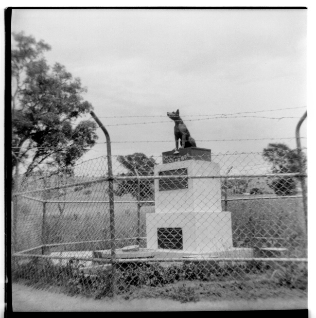 Unknown photographer (Australian) 'Untitled (The Dog on the Tuckerbox)' 1946-47