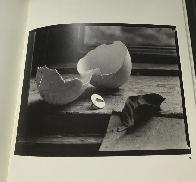Josef Sudek (Czech, 1896-1976) 'Untitled' 1950-54