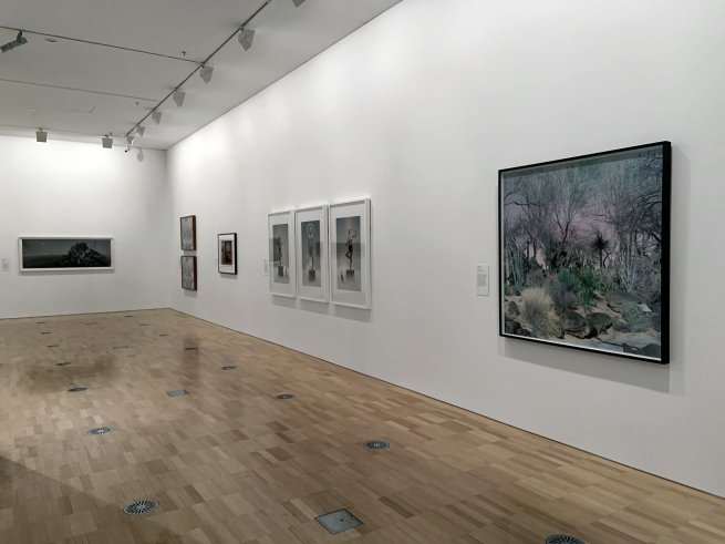Installation view of the exhibition 'Turning Points: Contemporary Photography from China' at the National Gallery of Victoria, Melbourne