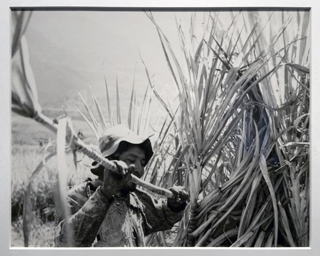 Robert Frank (Swiss-American, 1924-2019) 'Peru' 1948 (installation view)