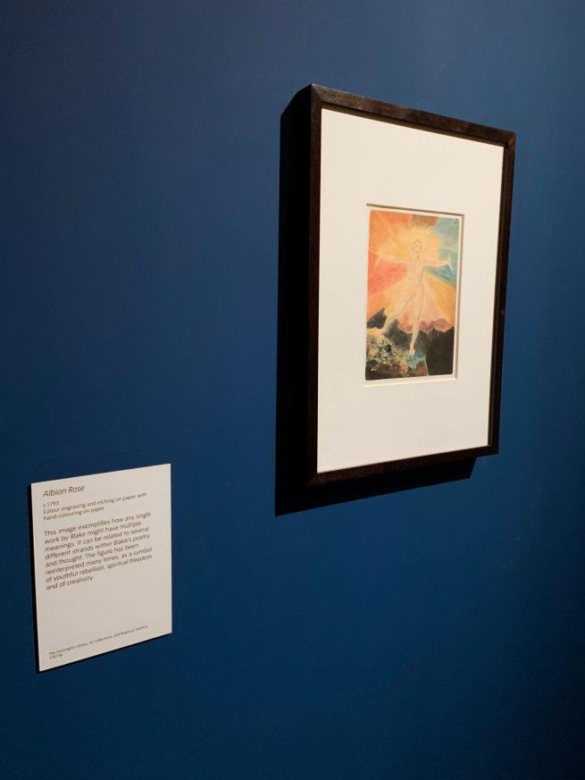 William Blake (British, 1757-1827) 'Albion Rose' c. 1793 (installation view)