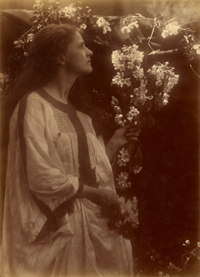 Julia Margaret Cameron (British, born India, 1815-1879) '[Spring]' 1873
