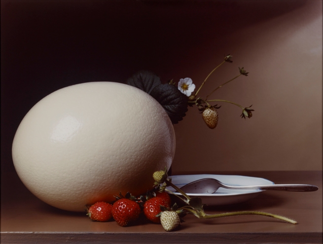 Sharon Core (American, b. 1965) 'Early American, Strawberries and Ostrich Egg' 2007