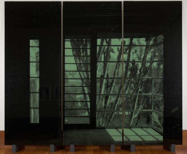Veronika Kellndorfer (German, b. 1962) 'Succulent Screen' 2007