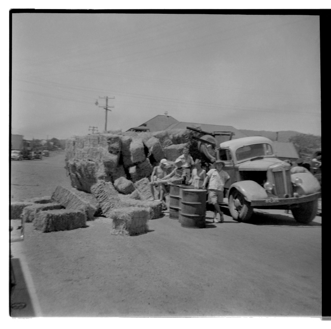 Unknown photographer (Australian) 'Untitled (Road accident, hay truck, Albion Park, New South Wales)' 1946-47
