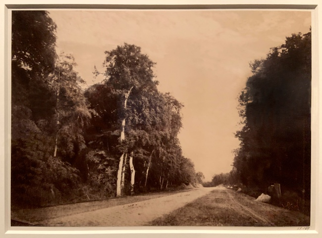 Gustave Le Gray (French, 1820-84) 'The Road to Chailly, Forest of Fontainebleau' 1852