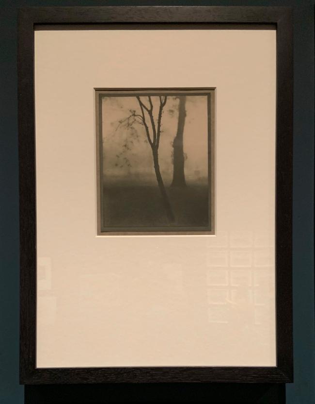 Alvin Langdon Coburn (American 1882-1966) 'Kensington Gardens' 1910