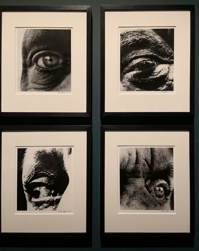 Bill Brandt (British, 1904-83) 'Dubuffet's Right Eye, Alberto Giacometti's Left Eye, Louise Nevelson's Eye, Max Ernst's Left Eye' 1960-63