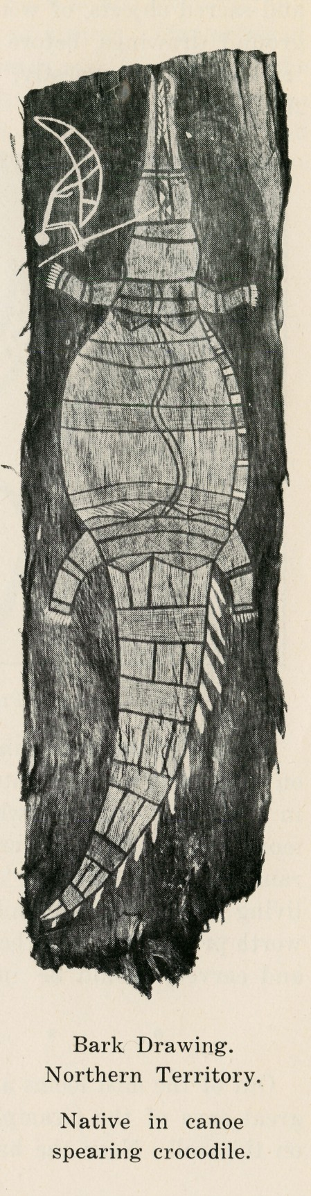 Bark Drawing. Northern Territory. Native in canoe spearing crocodile