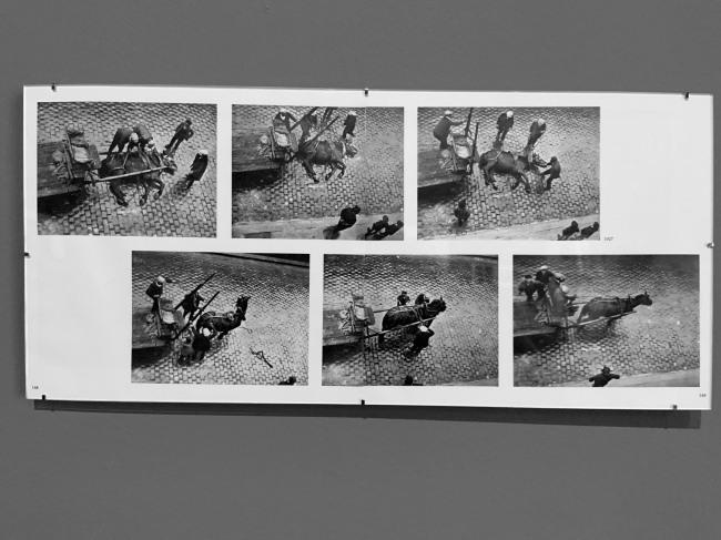 André Kertész (Hungarian, 1894-1985) 'Soixante ans de photographie' '60 years of photography' 1912-1972 (installation view)