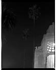 Marcus Bunyan. 'Gryphon and palms, St Kilda' 1992-94