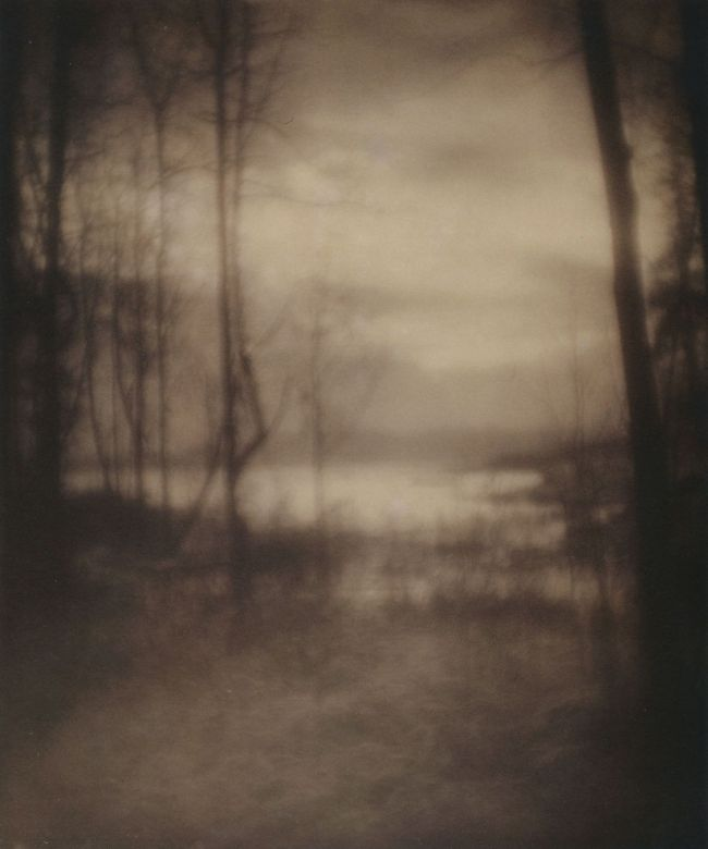 Imogen Cunningham (American, 1883-1976) 'Marsh at Dawn' 1906