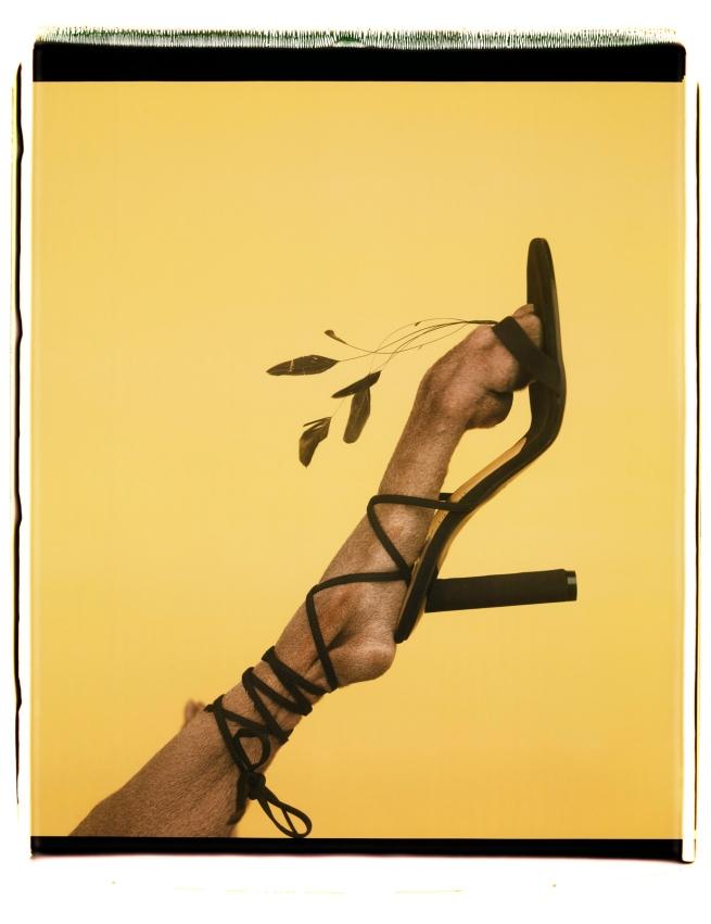 William Wegman (American, b. 1943) 'Feathered Footwear' 1999