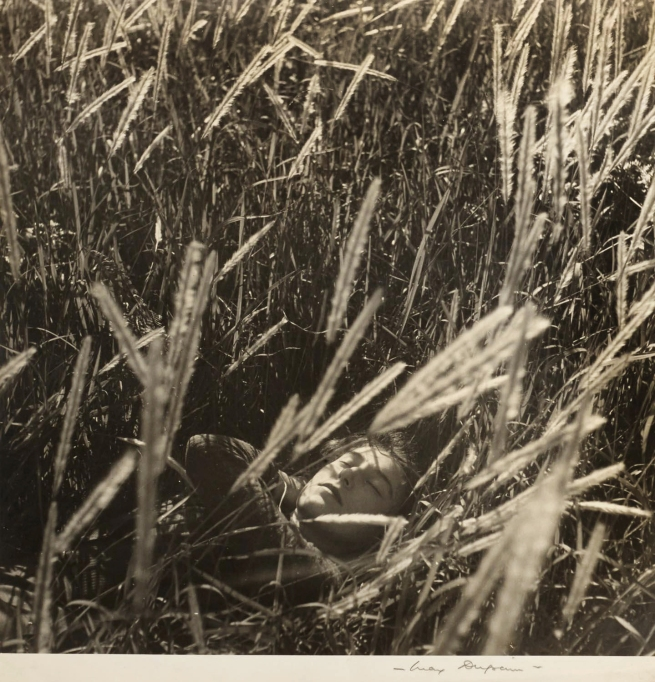 Max Dupain. '(Olive Cotton in Wheat Fields)' Nd