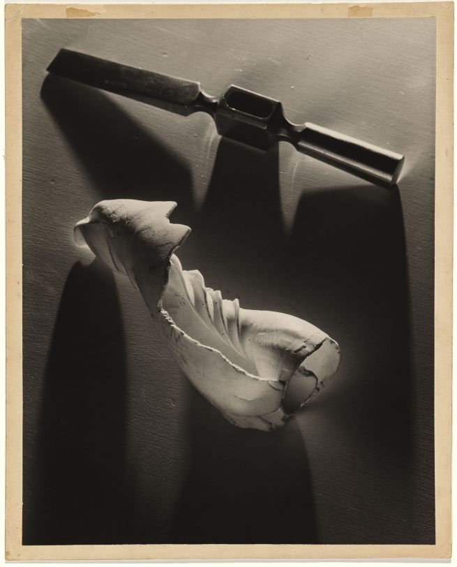 Max Dupain. 'Two forms' 1939