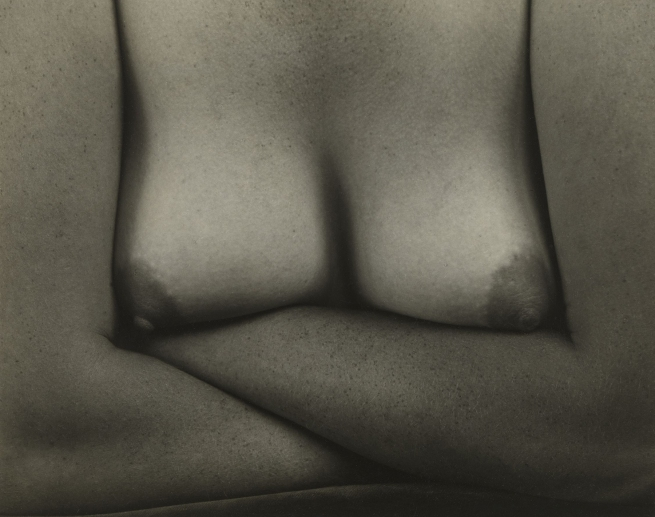 Edward Weston (American, 1886-1958) 'Nude' 1934