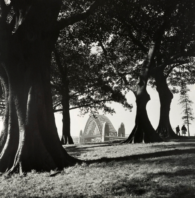 Max Dupain. 'Observatory Hill, Looking North to the Sydney Harbour Bridge' 1940