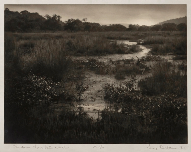 Max Dupain. 'Sundown, Mona Vale Marshes' 1932