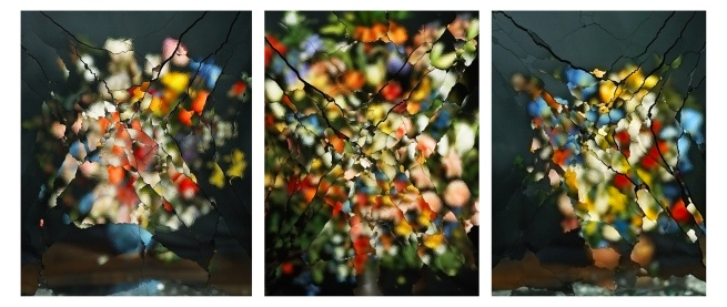 Ori Gersht (Israeli, b. 1967) 'On Reflection' 2014