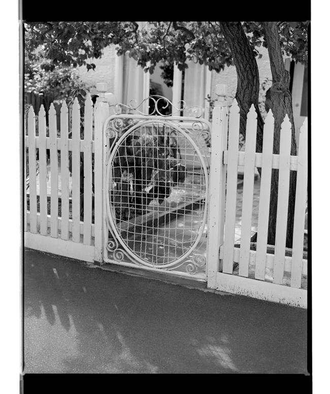Marcus Bunyan (Australian, b. 1958) 'Gate I' 1994-96