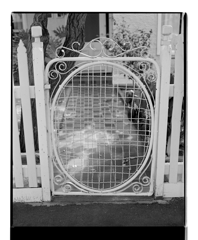 Marcus Bunyan (Australian, b. 1958) 'Gate II' 1994-96