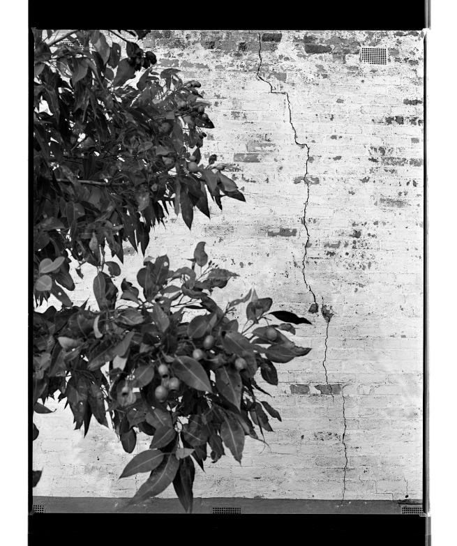 Marcus Bunyan (Australian, b. 1958) 'Cracked' 1994-96