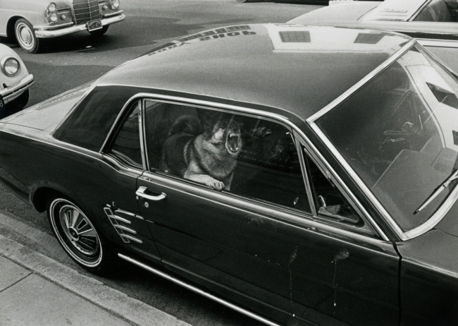 Gary Krueger (American, b. 1945) 'Los Angeles, 1971' 1971