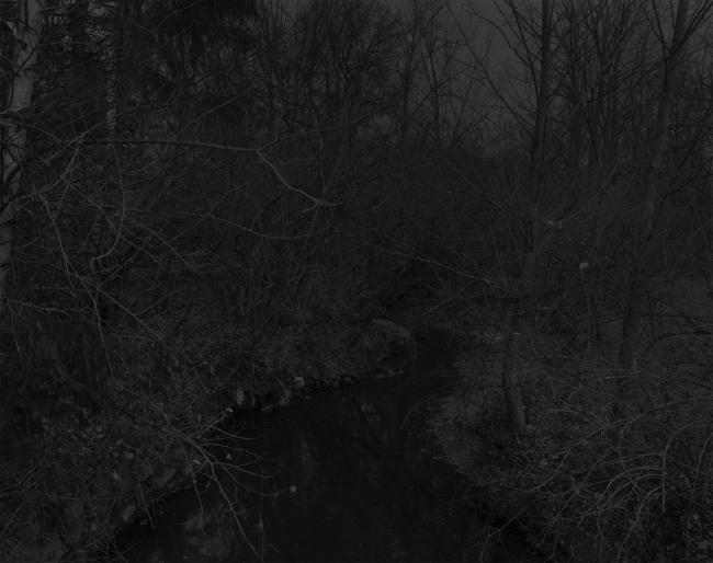 Dawoud Bey (American, b. 1953) 'Untitled #19 (Creek and Trees)' 2017