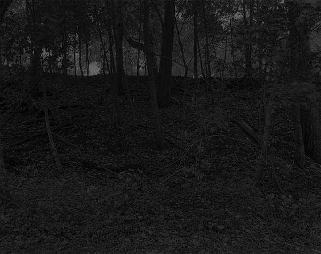 Dawoud Bey (American, b. 1953) 'Untitled #23 (Near Lake Erie)' 2017