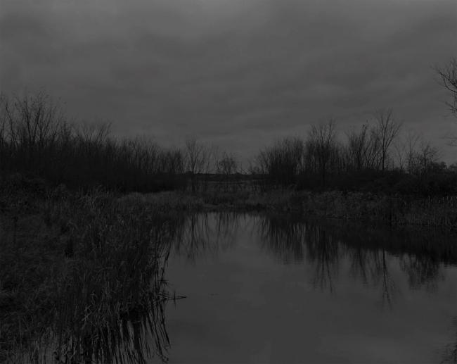 Dawoud Bey (American, b. 1953) 'Untitled #12 (The Marsh)' 2017