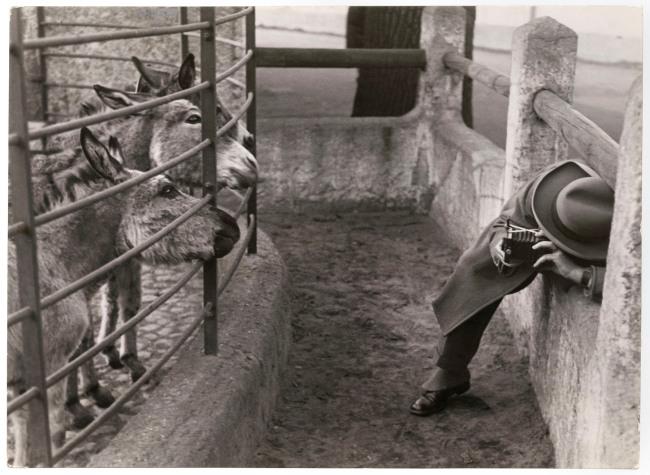 Friedrich Seidenstücker (German, 1882-1966) 'Celebrities snapped, Berlin Zoological Garden' 1930