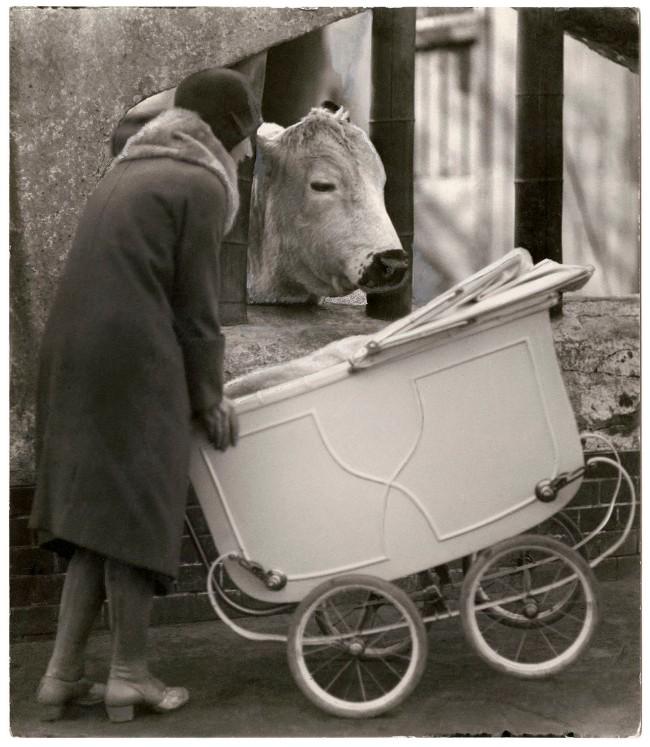 Friedrich Seidenstücker (German, 1882-1966) 'Encounters in the zoo' 1926