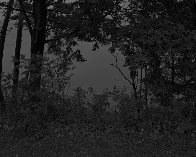 Dawoud Bey (American, b. 1953) 'Untitled #24 (At Lake Erie)' 2017