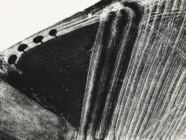 Mario Giacomelli (Italian, 1925-2000) 'Awareness of Nature, No. 171' (Presa di coscienza sulla natura, No. 171) 1980, printed 1981
