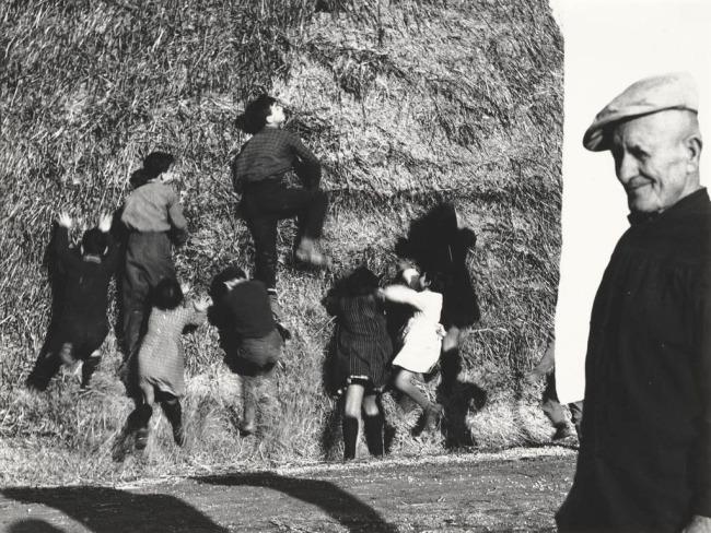 Mario Giacomelli (Italian, 1925-2000) 'The Good Earth, No. 219' (La Buona Terra, No. 219) 1964-65; printed 1981