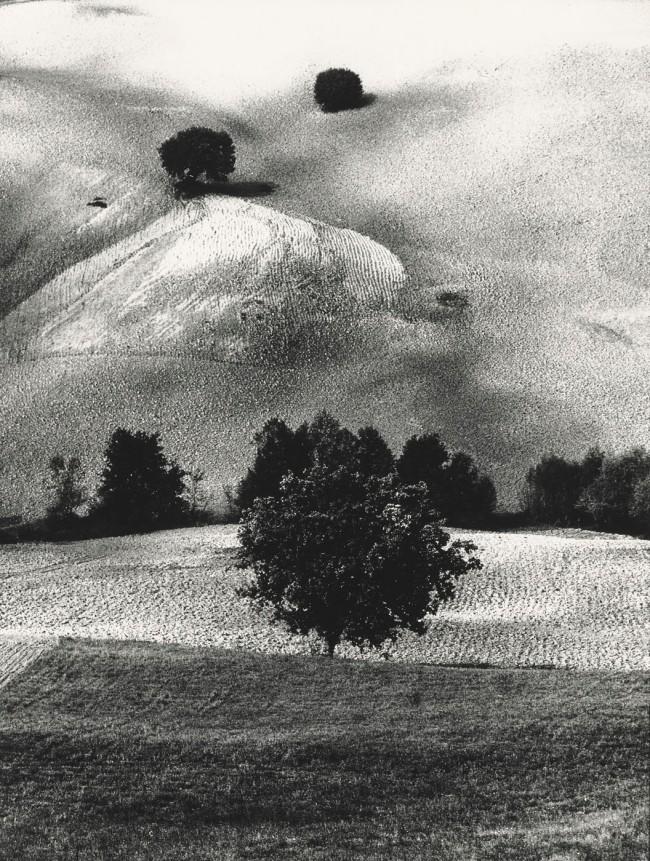 Mario Giacomelli (Italian, 1925-2000) 'Metamorphosis of the Land' (Metamorfosi della terra) 1958; printed 1981