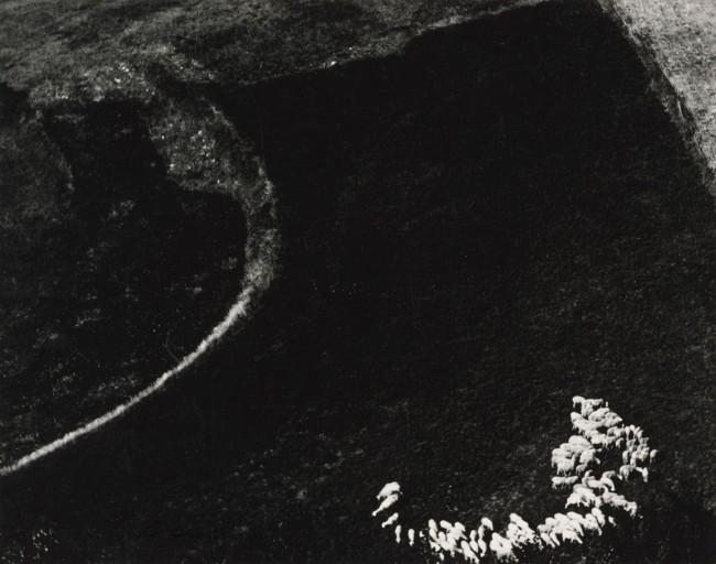 Mario Giacomelli (Italian, 1925-2000) 'Awareness of Nature, No. 3' (Presa di coscienza sulla natura, No. 3) 1970-74, printed 1981
