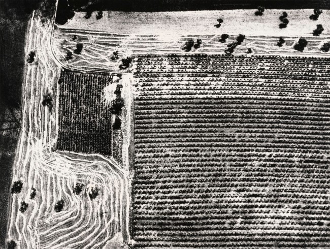 Mario Giacomelli (Italian, 1925-2000) 'Awareness of Nature' (Presa di coscienza sulla natura) 1976